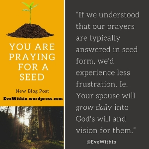You Are PrayingFor A Seed